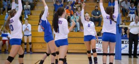 Volleyball team advances to state finals
